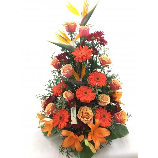 Centro funeral naranja