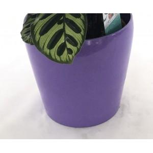 Macetero de cerámica 20 cm