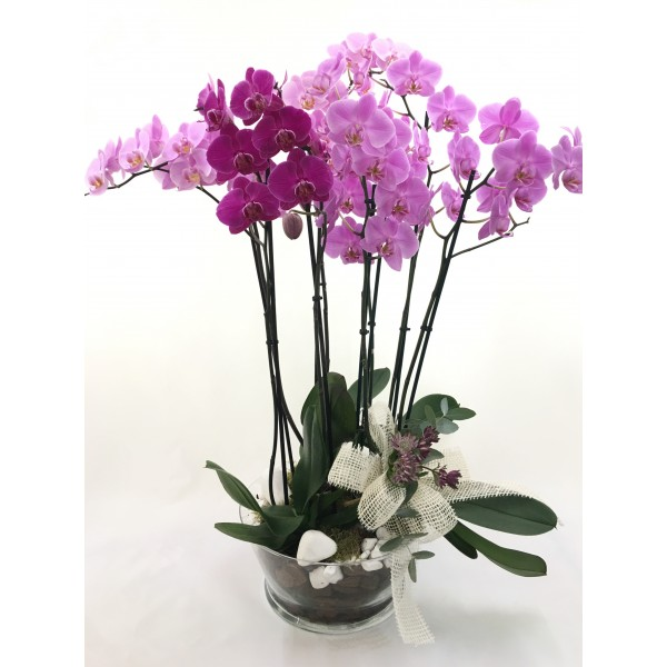 Centro trío orquídeas rosas